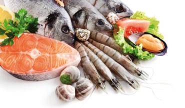 Verse vis en onze gezondheid